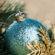 Branch of Christmas tree with decoration ball — Stock Photo #59907383