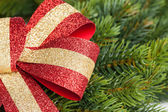 Christmas bow with green fir-tree — Foto Stock