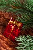 Ramo di albero di natale con scatola regalo — Foto Stock