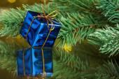 филиал елки с подарочной коробке — Стоковое фото
