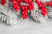 European holly and fir-tree, shallow DOF — Стоковое фото