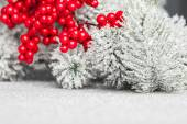 European holly and fir-tree, shallow DOF — Stockfoto