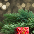 Branch of Christmas tree with gift box — Stock Photo #59910855