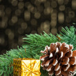 Branch of Christmas tree with gift box — Stock Photo #59911069