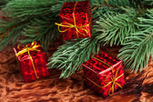 Branch of Christmas tree with gift box — Stock Photo