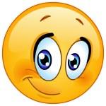 Half smile emoticon — Stock Vector #58346585