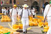 Carriers walking with many cheeses in the famous Dutch cheese market in Alkmaar — Stock Photo