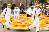 Carriers walking with many cheeses in the famous Dutch cheese market — Stock Photo