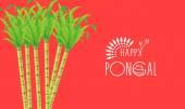 Poster or banner design for Happy Pongal festival celebrations. — Stockvektor