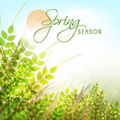Greeting card design for Spring Season. — Vetorial Stock