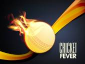 Cricket Fever concept with ball in fire flame. — Stock Vector