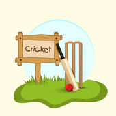 Cricket bat, ball and wicket stumps. — Stock Vector