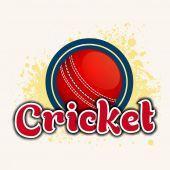 Cricket ball with text. — Stok Vektör