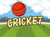 Cricket concept with red ball. — Stockvektor