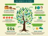 Eco infographic showing benefits of trees. — Stock Vector