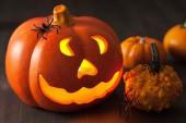 Halloween Jack O Lantern pumpkin spiders — Stock Photo