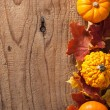 Decorative pumpkins and autumn leaves halloween background — Stock Photo #52282443