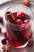 Mulled wine with cranberry and spices — Stock fotografie