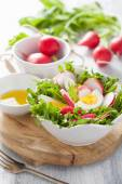 Healthy salad with egg radish and green leaves — Stock fotografie