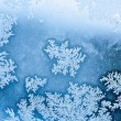 Winter rime background  — Stock Photo #56043615