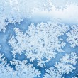 Winter ice rime background  — Stock Photo #58366649