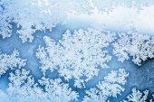 Winter ice rime background  — ストック写真