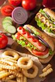 Hotdog with ketchup mustard vegetables and french fries — Stock Photo