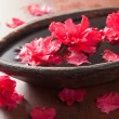 Beautiful red azalea flowers in wooden bowl for spa — 图库照片 #58941515