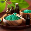 Green herbal salt and essential oils for healthy spa bath — Stock Photo #66200317