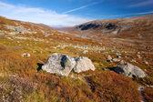 Sunny autumn landscape Norway Gamle Strynefjellsvegen — Stockfoto