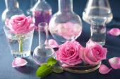 Alchemy and aromatherapy set with rose flowers and chemical flas — 图库照片