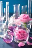 Alchemy and aromatherapy set with rose flowers and chemical flas — Stockfoto