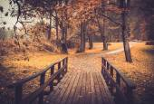 Walkway with wooden rails in an autumn park  — Stock Photo