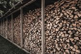Stockpile of sawed logs under shed — Stock Photo