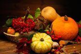 Jesienny Dzień Dziękczynienia martwa — Zdjęcie stockowe
