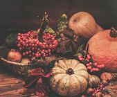 Thanksgiving day autumnal still life — Stock fotografie