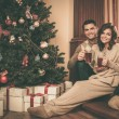 Couple near fireplace in Christmas decorated house interior — Stock Photo #54788029