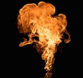 Burning flame on black background — Stock Photo
