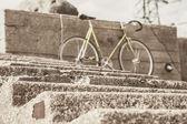 Bicycle on the nature behind macro taken ladder — Stockfoto