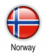 Norway official state flag — Stock Vector