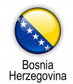 Bosnia and herzegovina official state flag — Stock Vector