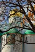 Fedorovskiy cathedral in Pushkin in autumn, — Stock Photo