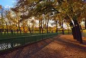 Sunset in Summer garden. Autumn in St.-Petersburg — Stock Photo