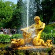 The Grand Cascade, palace and Samson Fountain in Peterhof, — Stock Photo #71657981