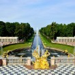 The Grand Cascade, palace and Samson Fountain in Peterhof, — Stock Photo #71658037