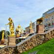 The Grand Cascade, palace and Samson Fountain in Peterhof, — Stock Photo #71658119