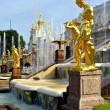 The Grand Cascade, palace and Samson Fountain in Peterhof, — Stock Photo #71658181
