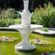 Постер, плакат: Fountain Nikita Botanical Garden Crimea Yalta