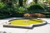 Pond. Nikita Botanical Garden. Crimea, Yalta. — Stock Photo