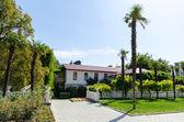 Nikita Botanical Garden. Crimea, Yalta. — Stock Photo